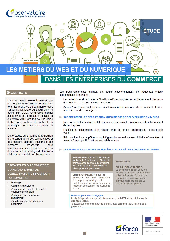 Etude sur les métiers du web et du numérique dans les entreprises du commerce